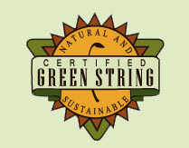 Green String Institute