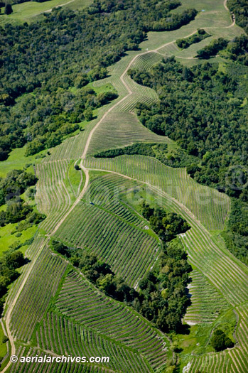 &copy aerialarchives.com Sonoma County mountain vineyard tracks, aerial photograph, photography, Napa Valley, vineyard, CA;<BR> AHLB2998 ADM2RF
