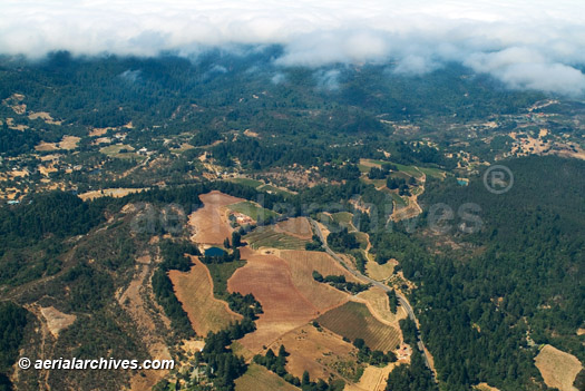 &copy aerialarchives.com aerial photograph vineyards and fog, Sonoma County, California