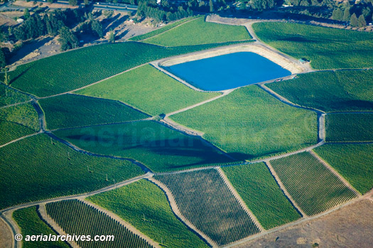 &copy aerialarchives.com Reservoir at Sonoma County Vineyard north of Petaluma, aerial photograph, photography, Sonoma Valley, vineyard, CA;<BR> AHLB3700.jpg, ADM2RF