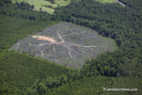 &copy aerialarchives.com, forest clear cutting, El Dorado California aerial photograph